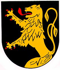 sponsor_rheinboellen